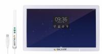 Интраоральная камера с монитором Dalaude DA-PTC01 Windows (18.5 дюйма)