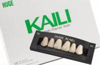 Планка передних верхних зубов HUGE Kaili S6 (6 шт)
