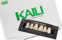 Планка передних верхних зубов HUGE Kaili T8 (6 шт)