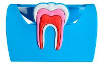 Подставка для визиток и телефона резиновая,голубая