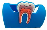 Подставка для визиток и телефона резиновая, синяя